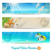 stock photo of tropical birds  - Travel and vacation vector banners with tropical natures - JPG