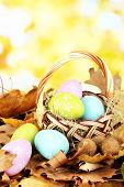 Easter eggs in wicker basket hidden in leaves