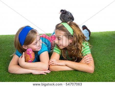 breeder hens kid sister farmer girls playing funny with chicken chicks on white background