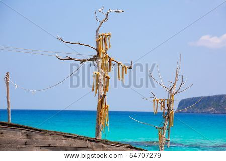 Peix sec is wind dried fish typical from Balearic Islands in formentera beach