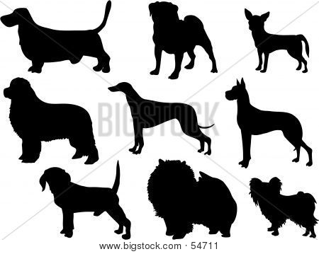 Dog Silouettes poster