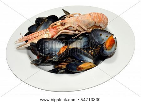 Cooked Langoustine And Mussels