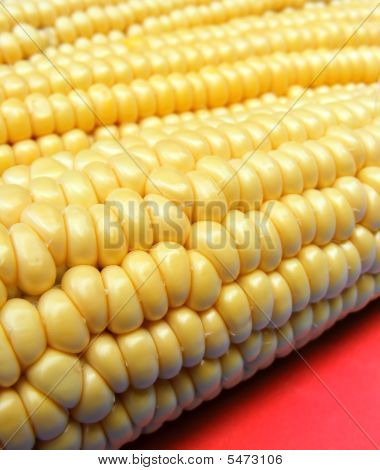 Corn On Red Backgound