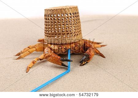 Basket, crab on sand and tubule for a cocktail