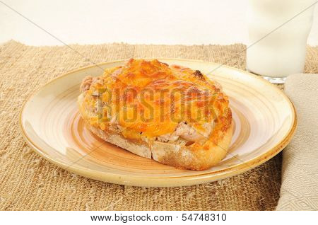 Tuna Melt With Milk