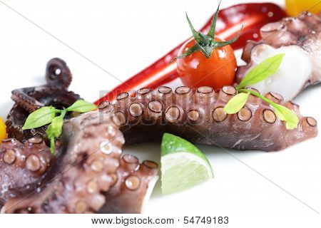 Steam Octopus