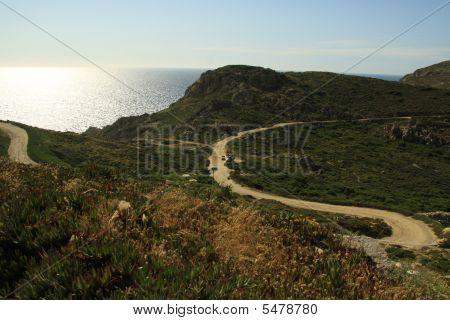 Path In The Bush In Corsica