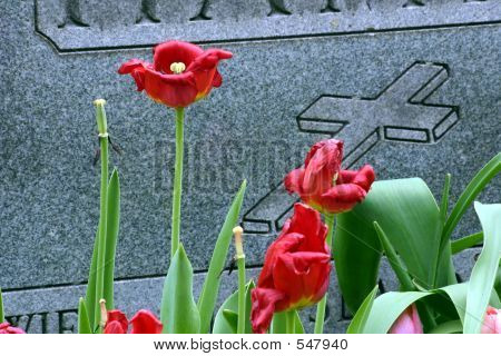 Gravestone Dead Flowers