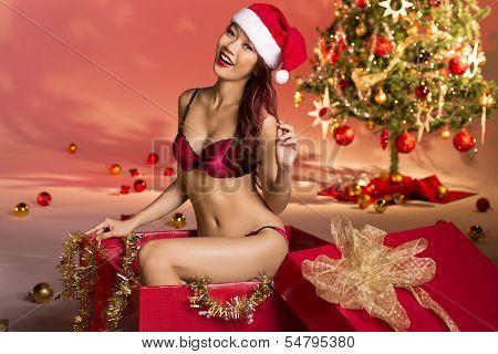 Sexy Xmas Gift