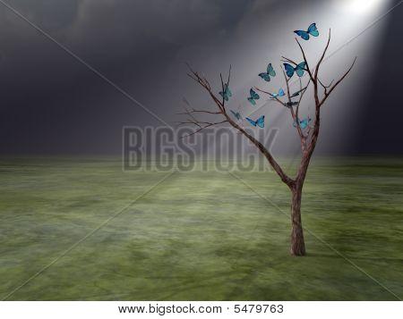 Butterflies In Godrays