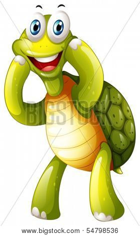 Illustration of a happy turtle on a white background