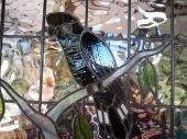 pic of stained glass  - Part of a stained Glass window with the bird - JPG