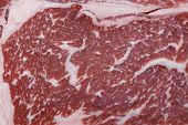 The marbling of a wagyu ribeye steak. The distribution of low-cholesterol, low-melting point fat thr