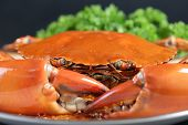 stock photo of exoskeleton  - Singapore chili mud crab in in restaurant - JPG