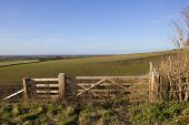 stock photo of cleaving  - wooden farm gates overlooking cleaving coomb and the vale of york from the heights of the yorkshire wolds - JPG