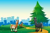 foto of hilltop  - Illustration of the three horses at the hilltop across the village - JPG