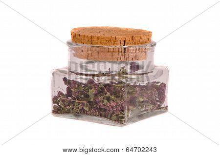 Wild Marjoram Oregan Herb Tea In Glass Bottle