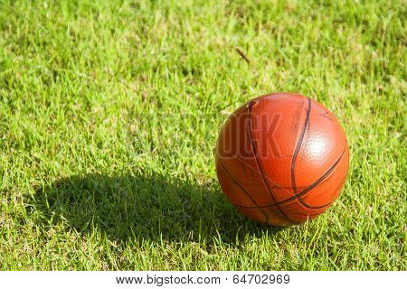 Dirty Small Basketball On The Grass
