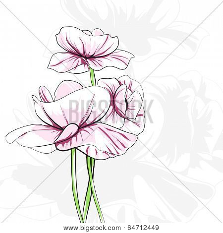 Abstract poppies on white background