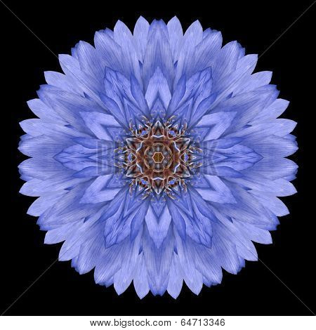 Blue Mandala Flower Kaleidoscope Isolated On Black