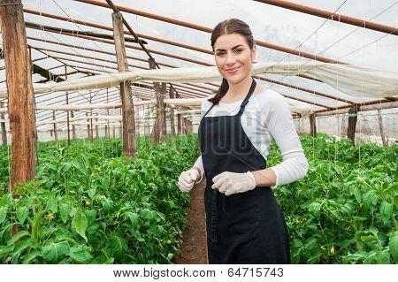 Beautiful young female gardener