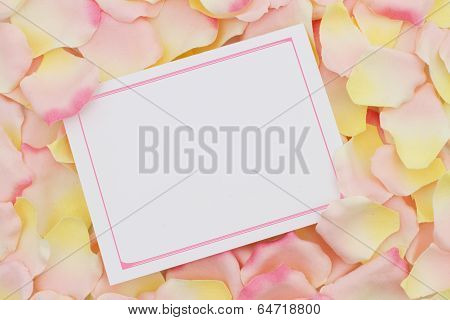 A Blank Card For Your Message