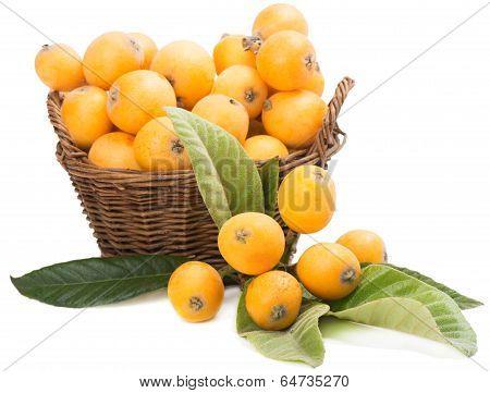 Loquat In Basket