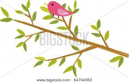 The view of bird on the bough