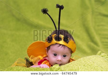 A small child in a fancy dress bees on a green background