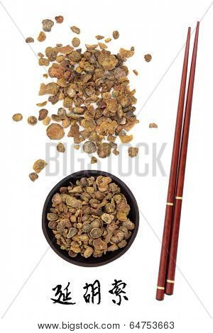 Corydalis tuber chinese herbal medicine and chopsticks. Translation of chinese calligraphy script is corydalis tuber.