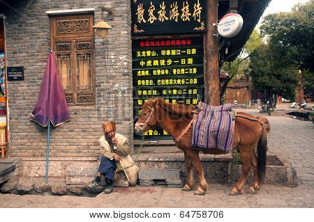 Horse Waiting Tourists In Shuhe Ancient Town.
