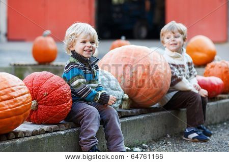 Little Boy Sitting On Pumpkin Patch