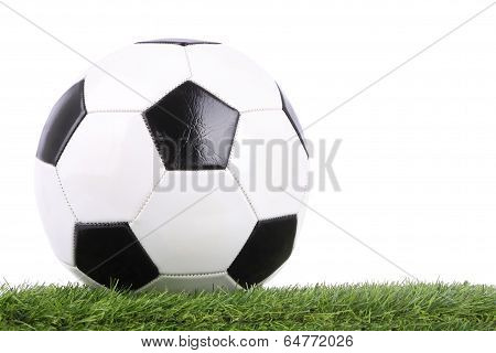 Stitch leather soccer ball on green grass.
