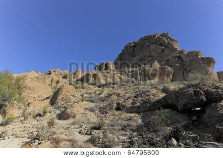 Sonoran Upland Natural Area