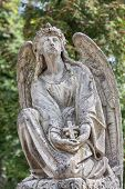 picture of cherub  - Old statue on grave in the Lychakivskyj cemetery of Lviv Ukraine - JPG