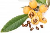 stock photo of loquat  - Close up view of some loquat fruit and seeds isolated on a white - JPG