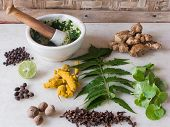 picture of pestle  - A selection of natural ingredients arranged in and around a marble mortar and pestle - JPG