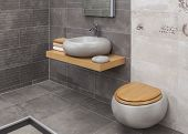 pic of cheeky  - Interior of modern bathroom with sink and toilet - JPG