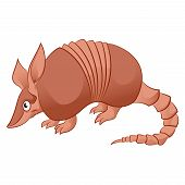 image of armadillo  - Vector image of an cartoon smiling Armadillo - JPG