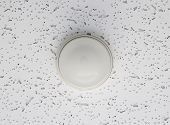 picture of smoke detector  - Smoke detector  - JPG