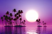 stock photo of tropical plants  - fairy purple sunset over coconut tropic islands - JPG