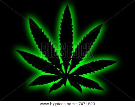 Cannabis Leaf with Green Halo