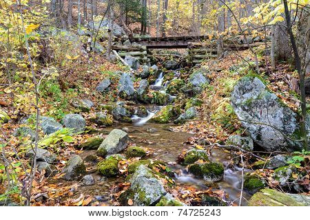 Logging Train Tracks over creek on Blue Ridge Parkway