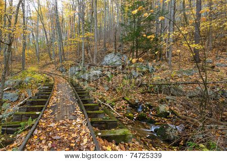 Logging tracks