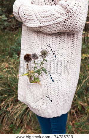Thistle In My Pocket