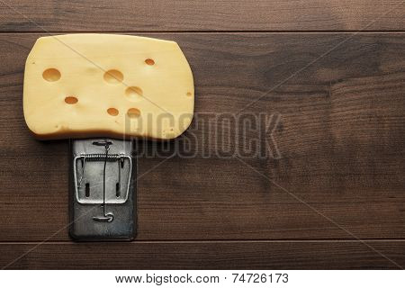 big piece of cheese in mousetrap