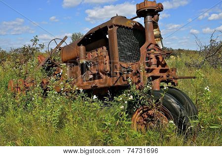 Tractor in the long summer grass