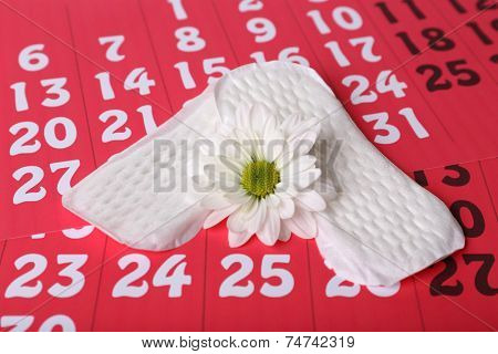 Sanitary pads and white flower on red calendar background