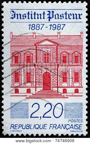 The Pasteur Institute
