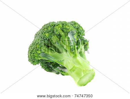 Closeup Broccoli Isolated On A White